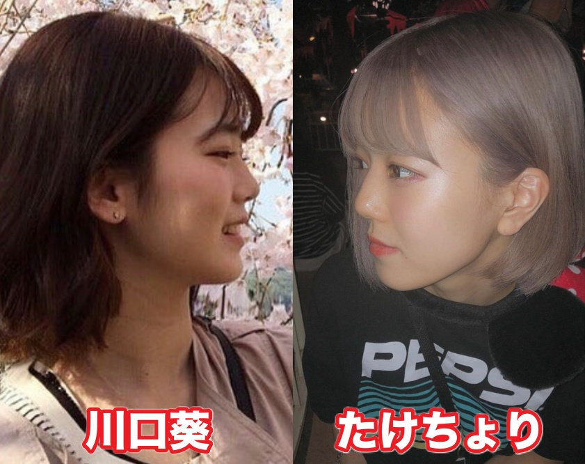 川口葵と似てる人は唐田えりかと桐谷美玲