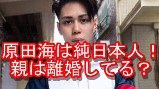 原田海ハーフ