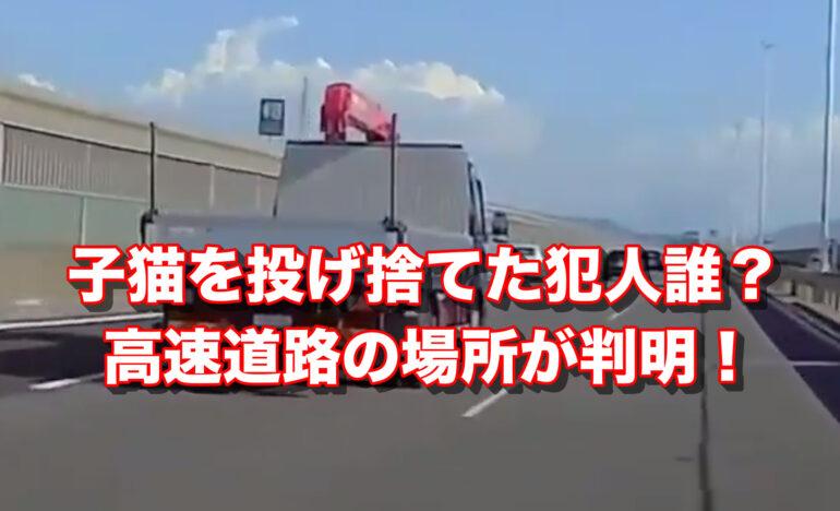 子猫を高速道路で投げた犯人