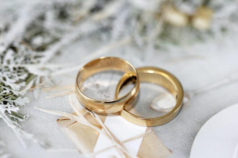 設楽統の嫁(妻)